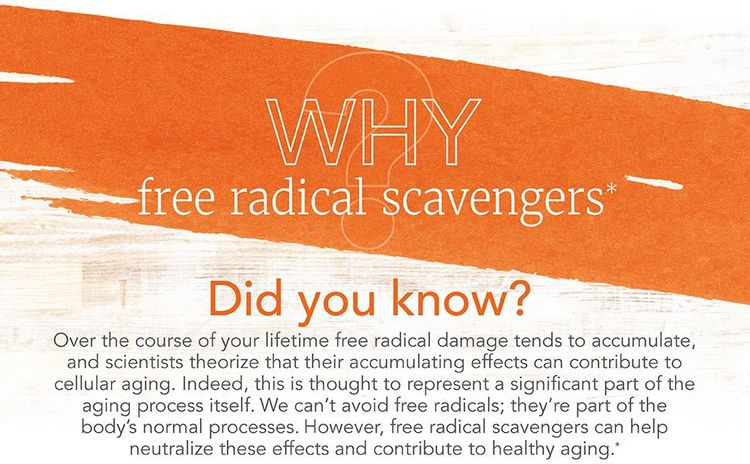 free radical scavengers aging process cellular neutralize healthy