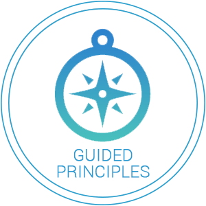 Guided Principles