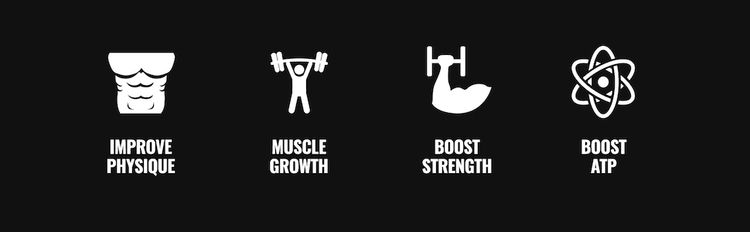 Improve Physique, Muscle Growth, Boost Strength, and Boost ATP