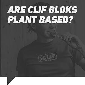 Afe clif bloks plant based?