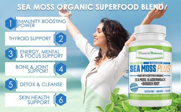 Sea moss organic - dr sebi sea moss - organic wildcrafted irish sea moss organic burdock root