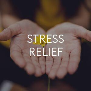 KSM-66 Organic Ashwagandha, Stress Relief