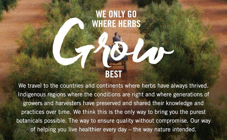 Where herbs grow best