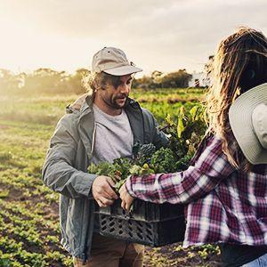 traceable farming organic non-gmo vegetables fruits garden of life