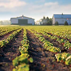 Standard Process Organic Farm